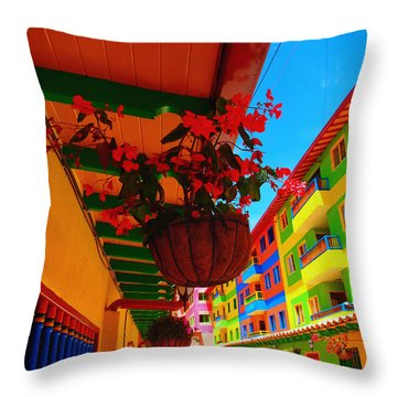 Casa Dulce Throw Pillow by Skip Hunt