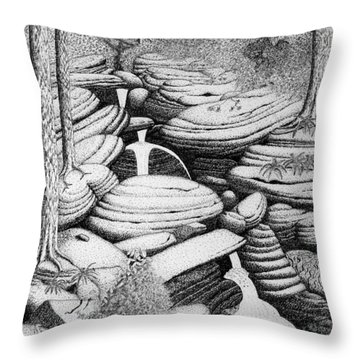 Cascade In Boulders Throw Pillow by Daniel Reed