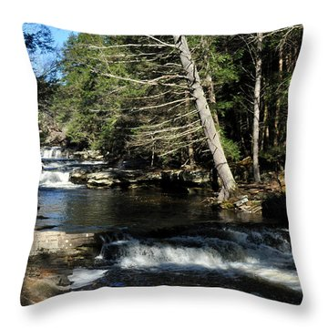 Cascade In The Catskills Throw Pillow by Diane Lent