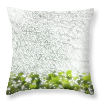 Throw Pillow featuring the photograph Cascade by Richard Piper