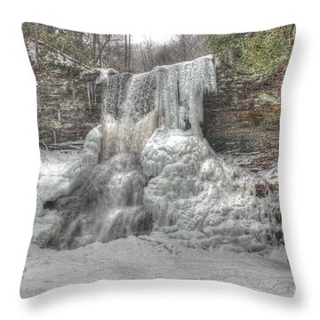 Cascades In Winter 1 Throw Pillow by Dan Stone
