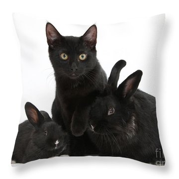 Cat And Rabbits Throw Pillow by Mark Taylor