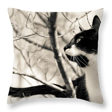 Cat In A Tree In Black And White Throw Pillow