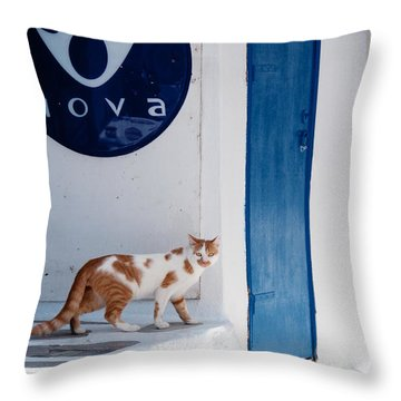 Cat In Mykonos Throw Pillow