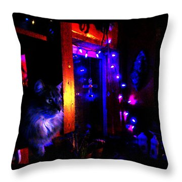 Throw Pillow featuring the photograph Cat In The Night Kitchen by Susanne Still