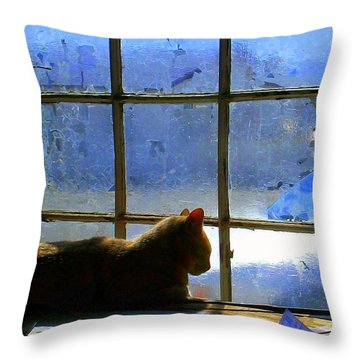 Cat In The Window Throw Pillow by Randall Weidner