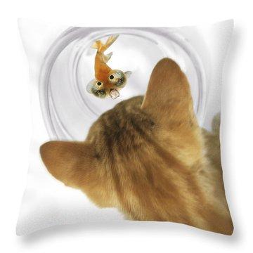 Cat Peering Into Fishbowl Throw Pillow by Darwin Wiggett