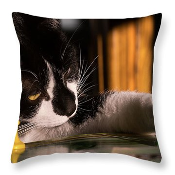 Cat Playing A Game Throw Pillow