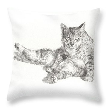 Cat Sitting Throw Pillow