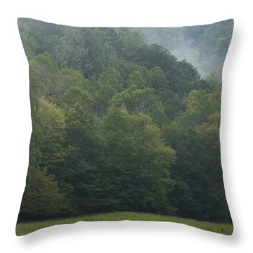 Cataloochee Elk Throw Pillow by Carrie Cranwill