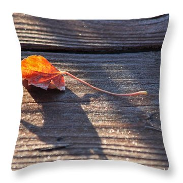 Catching The Light Throw Pillow by Lauri Novak