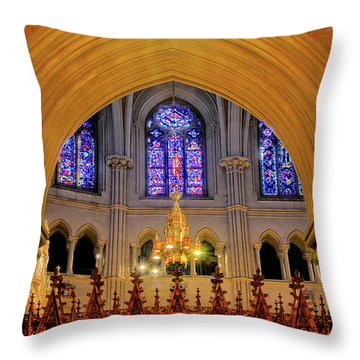 Cathedral Study Throw Pillow by Dave Mills
