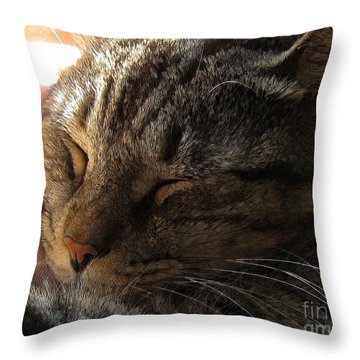 Catnap Throw Pillow