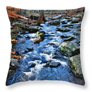 Catoctin Stream Throw Pillow by Stephen Younts