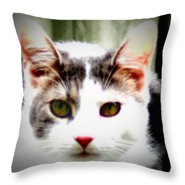 Cats Meow Throw Pillow by Bill Cannon