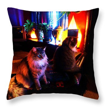 Throw Pillow featuring the photograph Cats On A Drum by Susanne Still