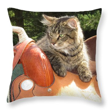 Cats Ride Free Throw Pillow