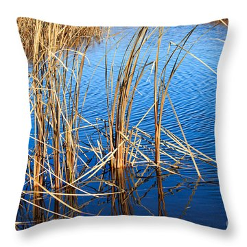 Cattail Reeds Throw Pillow by Ms Judi