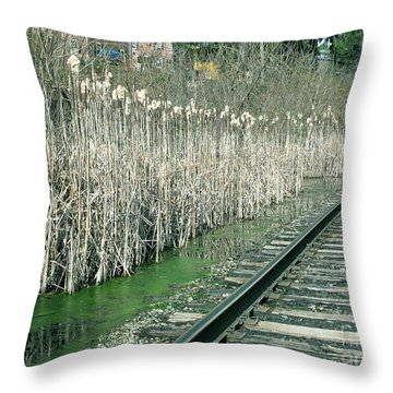 Cattails By The Tracks Throw Pillow