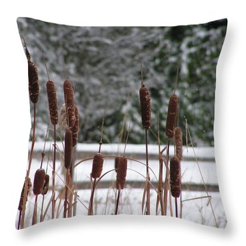 Cattails In Winter Throw Pillow