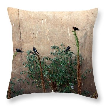 Cave Swallows Throw Pillow by Yumi Johnson