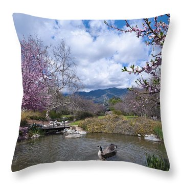 Celebrating Spring Throw Pillow by Mike Herdering