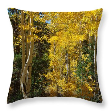 Throw Pillow featuring the photograph Changing Seasons by Vicki Pelham
