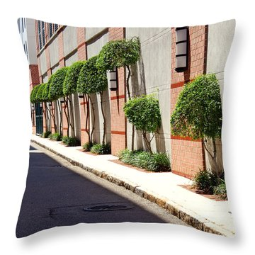 Throw Pillow featuring the photograph Charleston Street by Jean Haynes