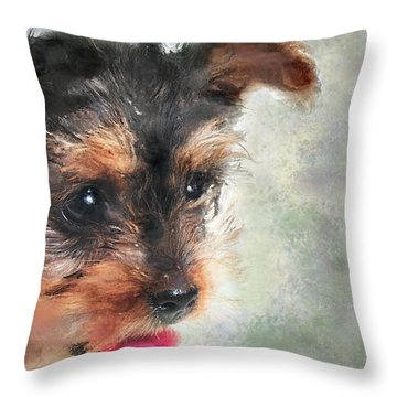 Charming Throw Pillow by Betty LaRue