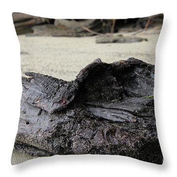 Charred Driftwood Throw Pillow by Nancy Harrison