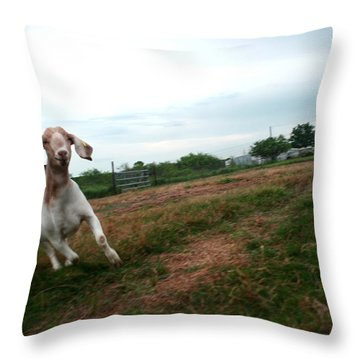 Throw Pillow featuring the photograph Chased By A Crazy Goat by Lon Casler Bixby