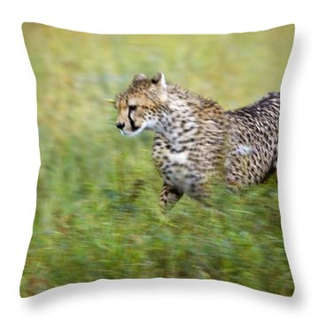 Cheetah Acinonyx Jubatus, Running Throw Pillow by Carson Ganci