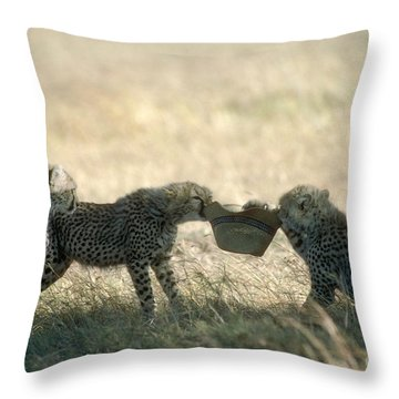Cheetah Cubs Play With Hat Throw Pillow by Greg Dimijian