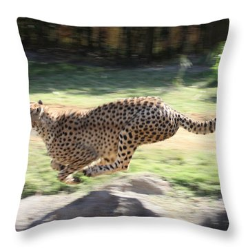 Cheetah Sprint Throw Pillow by Joseph G Holland