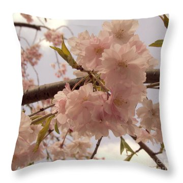 Throw Pillow featuring the photograph Cherry Blossom 2 by Andrea Anderegg
