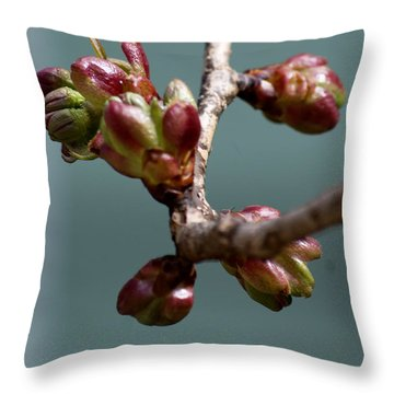 Cherry Blossom Number 4 Throw Pillow