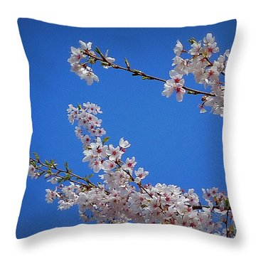 Cherry Blossom Sky Throw Pillow by Peter Mooyman