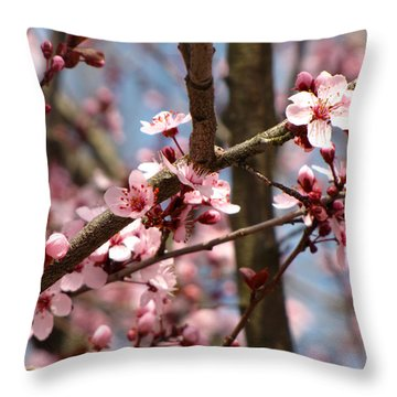 Cherry Blossoms Throw Pillow by Denise Keegan Frawley