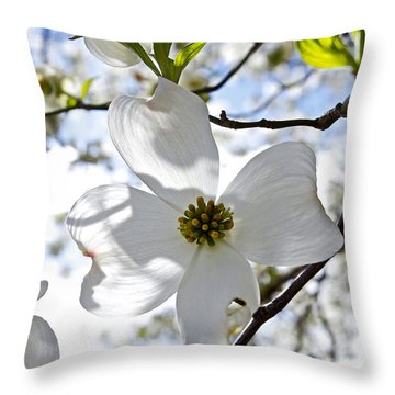 Cherry Blossoms I Throw Pillow by Glennis Siverson