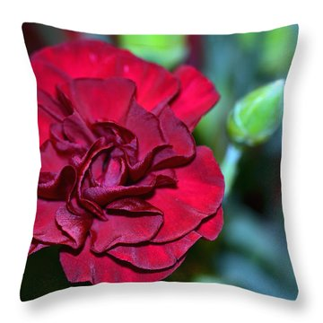 Cherry Red Carnation Throw Pillow by Sandi OReilly
