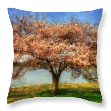 Cherry Tree Throw Pillow by Lois Bryan