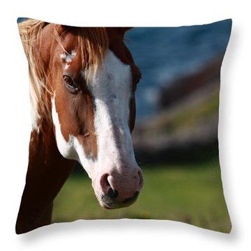 Chestnut Mare  Throw Pillow