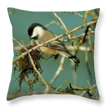 Chick-a-dee Throw Pillow by Rod Wiens