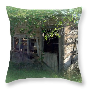 Chicken Coop Throw Pillow by Bonfire Photography