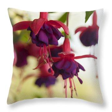 Chinese Lantern Throw Pillow by Chad Davis