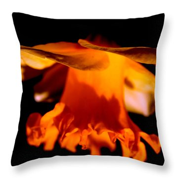 Chinese Night Lantern  Throw Pillow