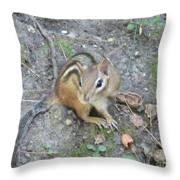 Chipmunk Feast Throw Pillow