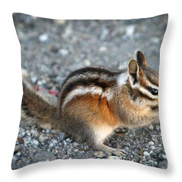 Chipmunk Throw Pillow by Henrik Lehnerer