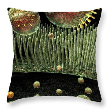 Chlamydia Replication Throw Pillow by Russell Kightley