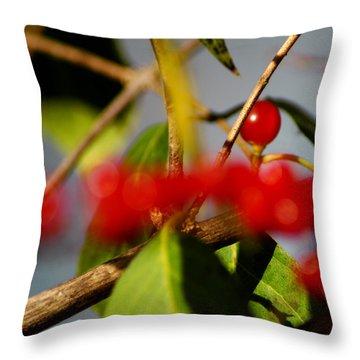 Choice Berry Throw Pillow by LeeAnn McLaneGoetz McLaneGoetzStudioLLCcom